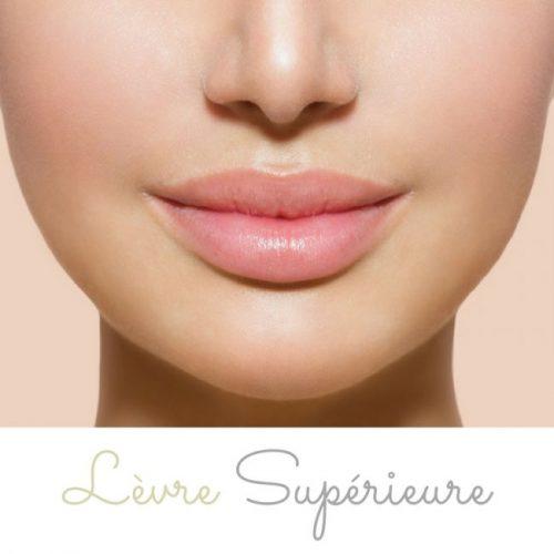 Lèvre supérieure